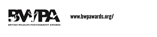 BWPA2.png